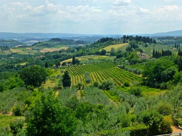 Driving through the Chianti Region